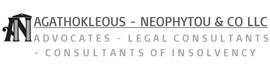 Agathokleous-Neophytou & Co LLC