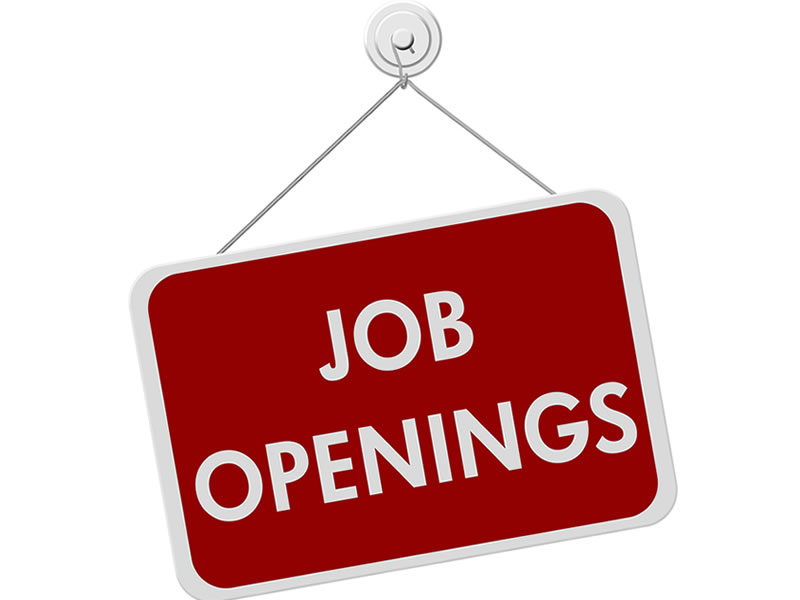 Legal job openings in the public sector